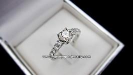 แหวนเพชร 51 ตังทรง Mirror Mirror แหวนเพชรชู เม็ดยอดชูด้วยเพชรน้ำงาม เม็ดกำลังสวย บ่าใส่ด้วยเพชรประดับเป็นการเพิ่มความ สมบุรณ์แบบให้กับแหวนแต่งงาน หรือสำหรับผู้หญิงวันนี้ได้ดี ราคา ….. โพสต์ใน FB ไว้แล้วจ้าตามลิ้งมาเลยคะ https://www.facebook.com/WarunyupaJewelry?ref=hl#!/photo.php?fbid=401038363302040&set=a.201131159959429.51503.105019869570559&type=1&theater