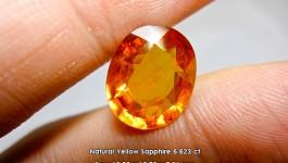 Natural Yellow Sapphire (บุษราคัม) 6.623 ct ราคา Xx,xxx บาท
