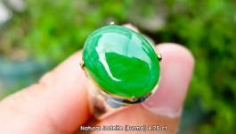 Natural Jadeite หยกพม่าเนื้อน้ำผึ้ง 4.75 กะรัต (ใส่โปร่งแสง ไม่ทึบ) สียอดนิยม แอ๊ปเปิ้ลกรีน สีสวยเจิดมากคะ เวลานำขึ้นตัวเรือนจะยิ่งทำให้สวยเด่นคะมีใบเซอร์ LAB คะ ไม่มีการทำสีหรือใส่สารแก้วใดๆคะ ++ ราคา 35,400 บาท ++